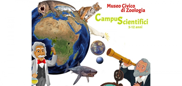Campus Scientifici al Museo Civico di Zoologia di Roma