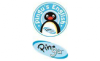 Pingus English Verona